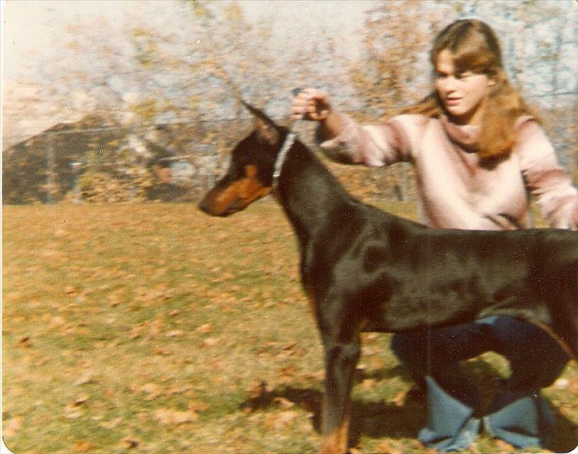 Aja & I 1979